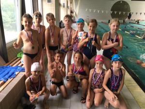 Plavecké skupiny 2017